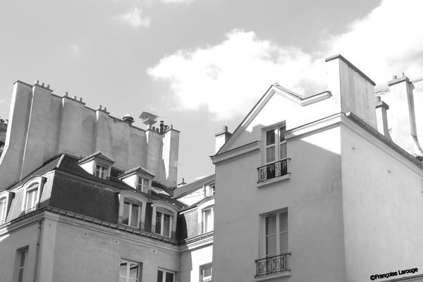 ToitsParis3c25-04-2013-Francoise-Larouge.jpg