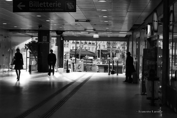 GareAusterlittzc2014--Francoise-Larouge.jpg