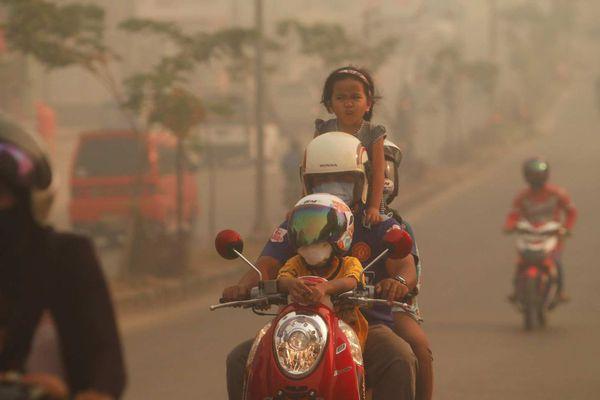 sem13juik-Z25-Sauve-qui-peut-incendie-Duri-Indonesie.jpg