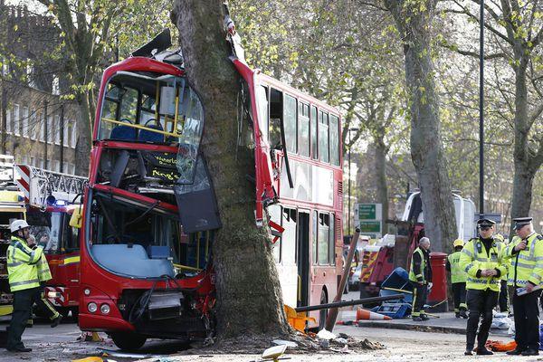 sem13deci-Z12-Rare-accident-bus-dans-un-arbre-Londres.jpg