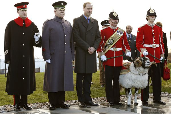 sem14decg-Z10-Le-prince-William-inaugure-un-monument-commem.jpg