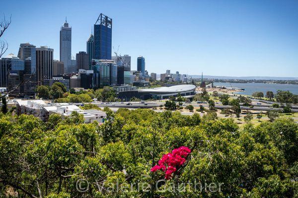 Australie-0260B.jpg