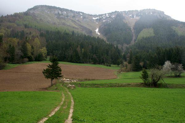 100509 Plateau du Cornafion 009