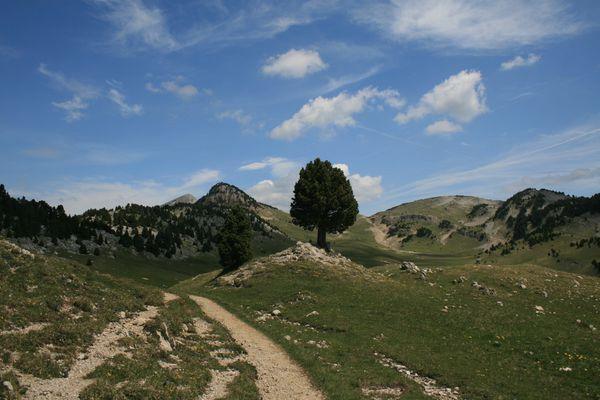 110526 Rochers du Parquet 066