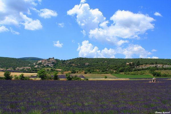 Provence 3247.1
