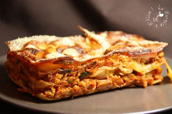 lasagnes-light-poulet-WW-PP-2.JPG