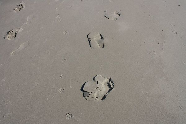 Marianne und Deria Strand