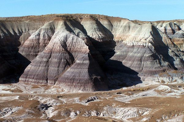 PFNP---Blue-Mesa-trail---rangers-flickr.jpg