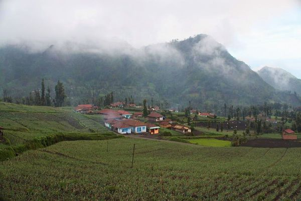 Cemoro-Lawang-cultures---what-an-amazing-world.jpg