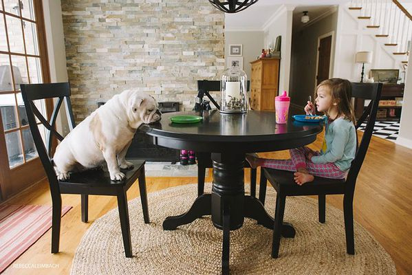 girl-english-bulldog-friendship-photography-lola-h-copie-4
