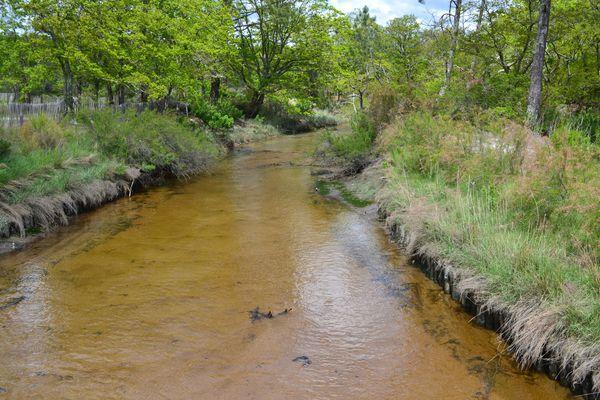 bassin-mai-2012-045.JPG