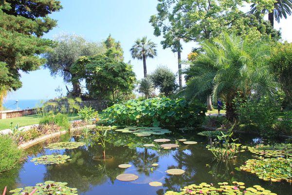Menton (06) Jardin botanique du Val Rahmeh 40160 redimensio
