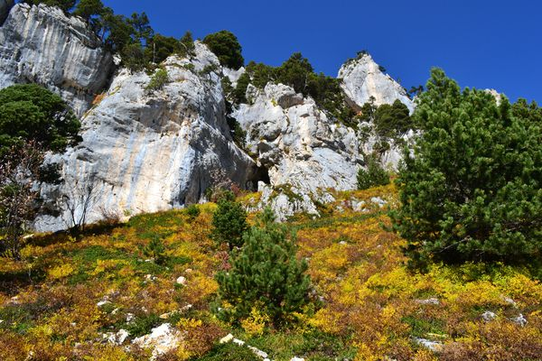 2012-10-21-chartreuse-seuil-delaup 0831