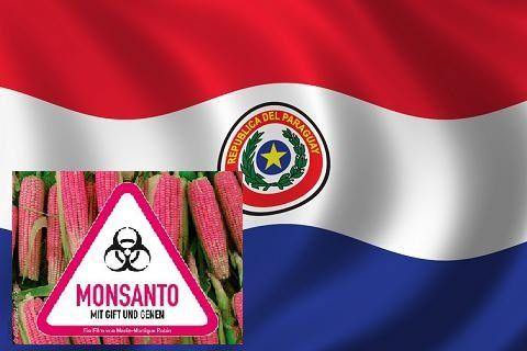 Bandera_Paraguay.jpg