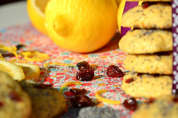 Cookies-citron-cranberries-pavot9.JPG