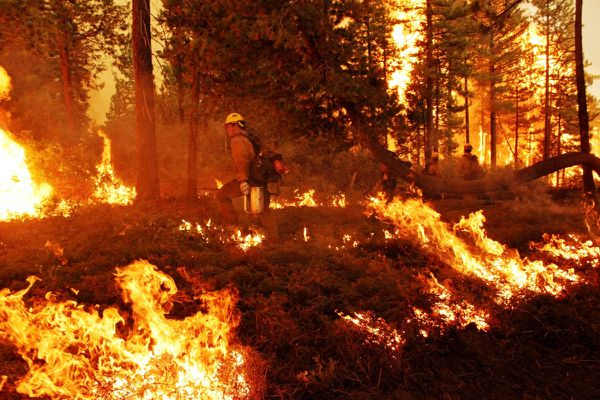 Incendie - Rim Fire - USFS - Yosemite - Drip torch - Burn ops