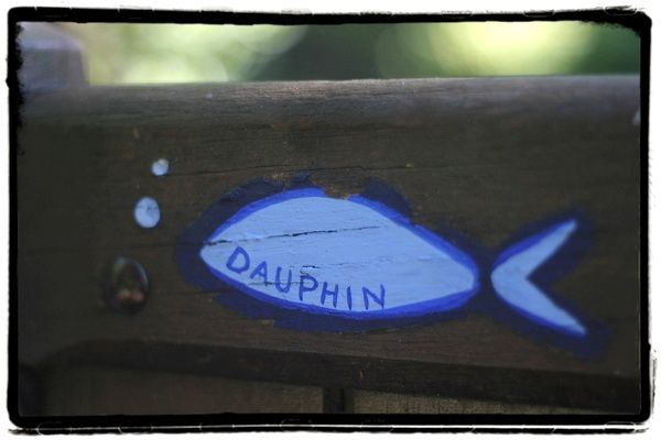 dauphin-1.jpg