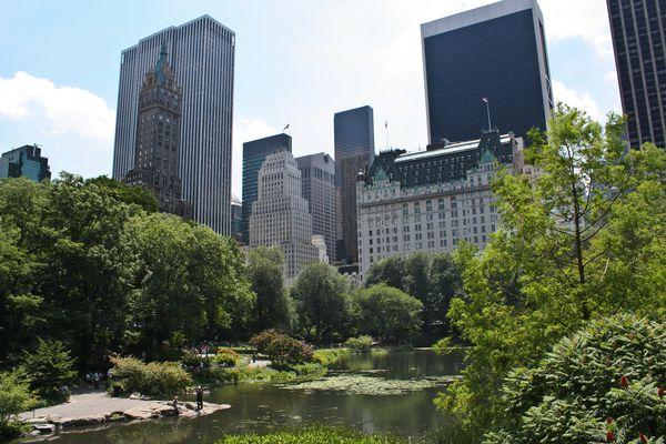Photos-NY-6 8007
