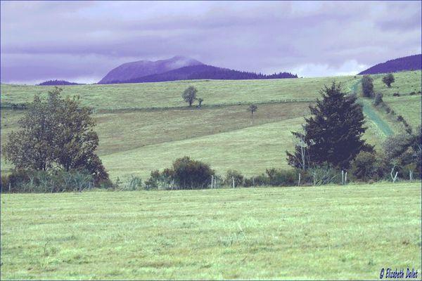 prairie.jpg