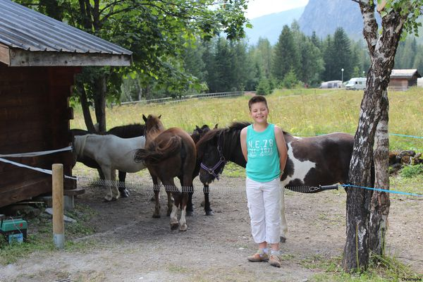 groupe de poney