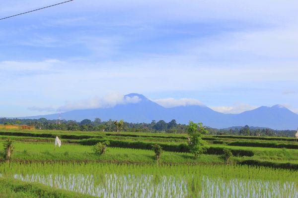 Bali---March-2011 9787
