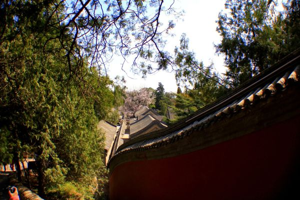 Pekin - Summer palace (9)