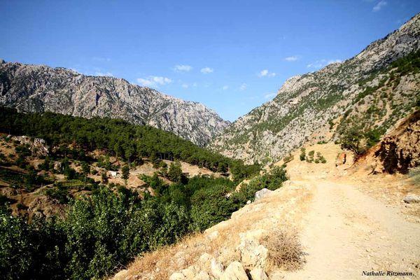 1 - Eski Fırnız köyüne giden bugünkü yolu copy
