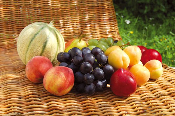 Fruits-dete_Osier-copie-1.jpg