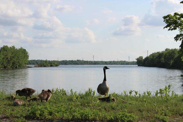 Mai-2012 7832-small