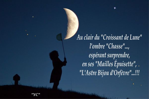 L'OMBRE CHASSE