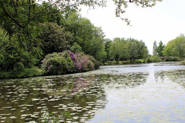Gironde-0332.JPG
