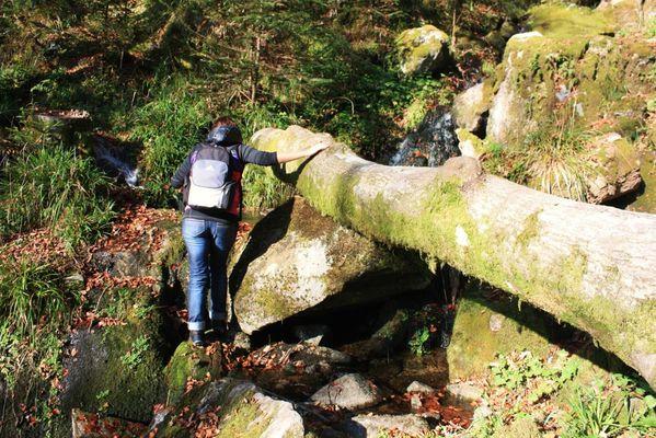 Hautes-Vosges 0365 (FILEminimizer)