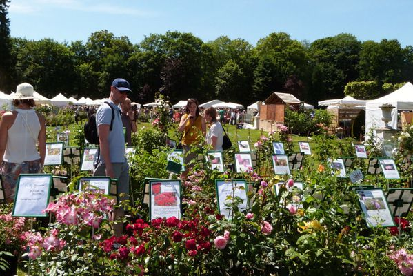 journees-de-la-rose-chaalis---juin-2014---mela-ro-copie-1.jpg
