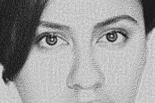 campagnebeeld_mosaic.jpg