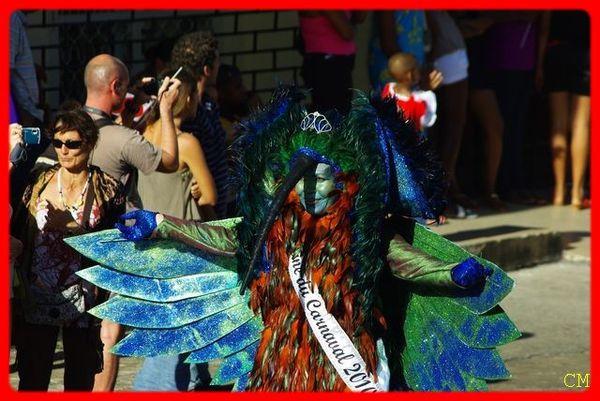 Carnaval 2010 - Gde parade Cayenne 043 [640x480]