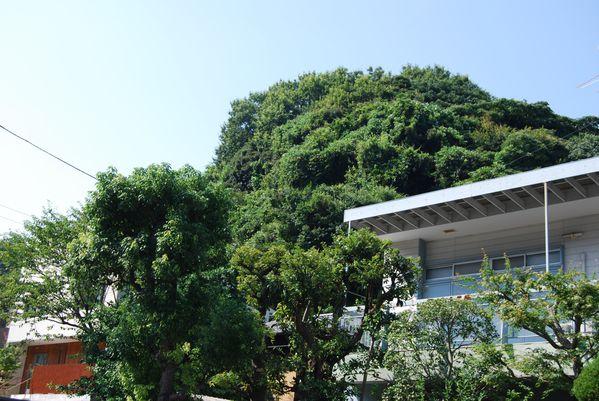 Kamakura-aout-2010 8269