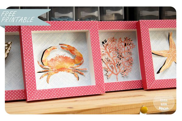 free-printable-shell-collection-box-9-copie-1.jpg