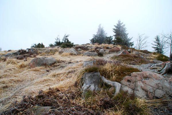 D05 - Prayé - Bipierre - tête blanche roches - Haute Loge