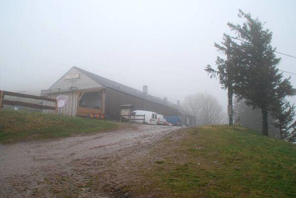 C01 - Transhumance Bussang-Drumont 21.04.12001