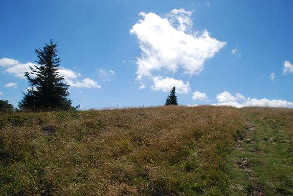 F13 - Hohneck - Grand Ballon087