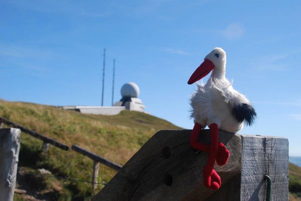 G10 - Hohneck - Grand Ballon155