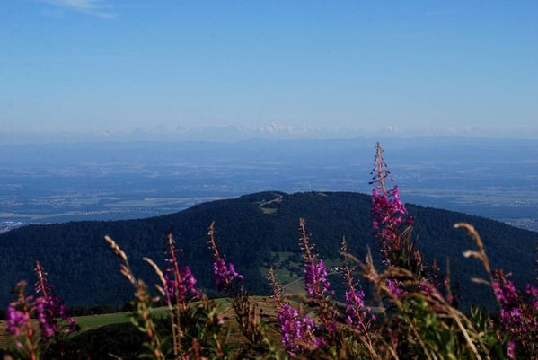 G14 - Hohneck - Grand Ballon182