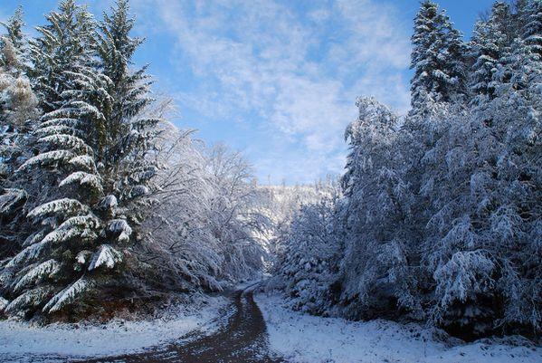 L02 - rando neige 28-10-12