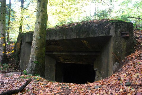 A17 - bunkers Donon