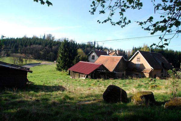 D03 - Rothlach