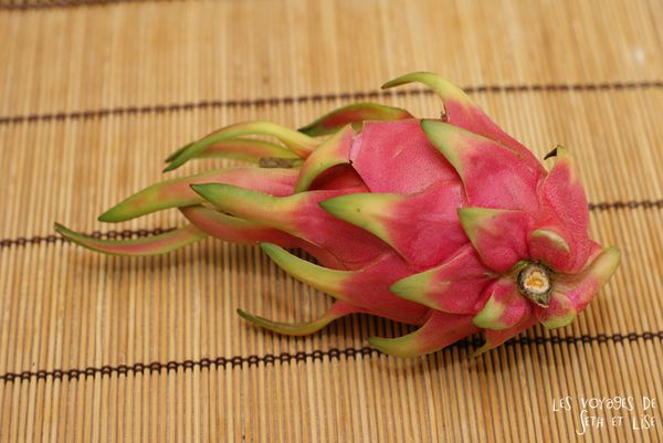blog voyage culinaire pitahaya dragon fruit wtf insolite