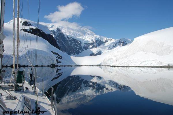 Antarctique 0396 4