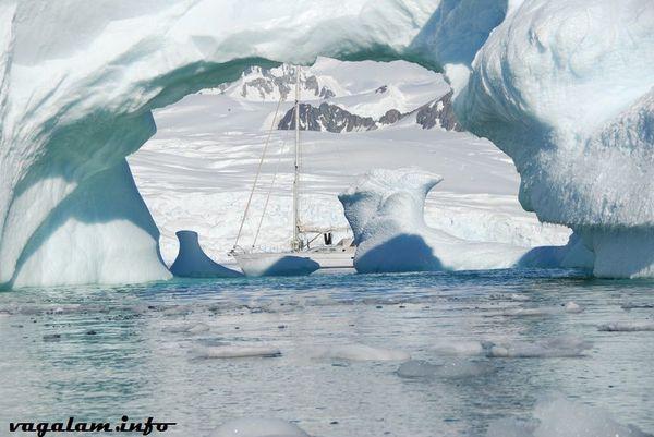 Antarctique3 0396 6