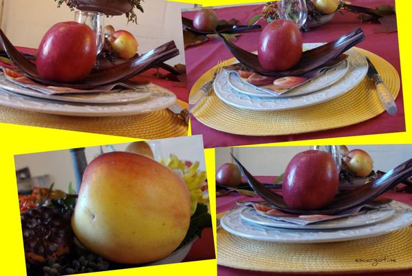 collage pommes 16