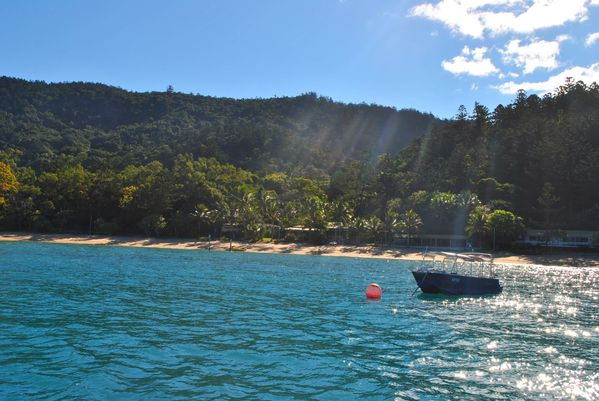 Whitsundays (223)